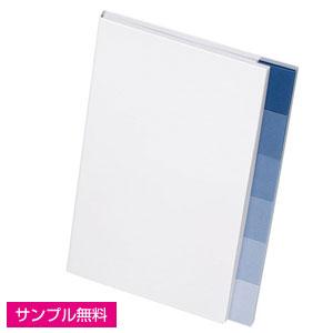 6+1付箋セット(グラデーション)(白・青)