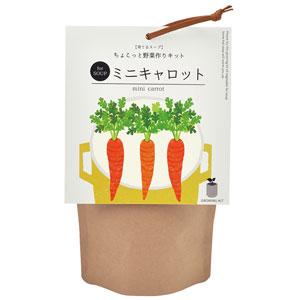 育てるスープ ちょこっと野菜作りキット(ミニキャロット)