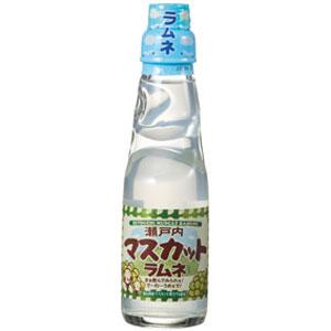 瀬戸内瓶ラムネ マスカット味