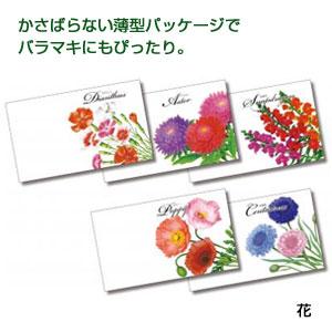 横型イラスト種子1個(花)