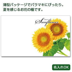 横型イラスト種子夏の花1個(ひまわり)