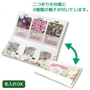 グリーンメール種子3個セット(花)