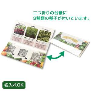 グリーンメール種子3個セット(野菜)