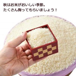 お米のすくいどりキット30人用